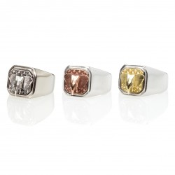 Elephant Square Signet Ring